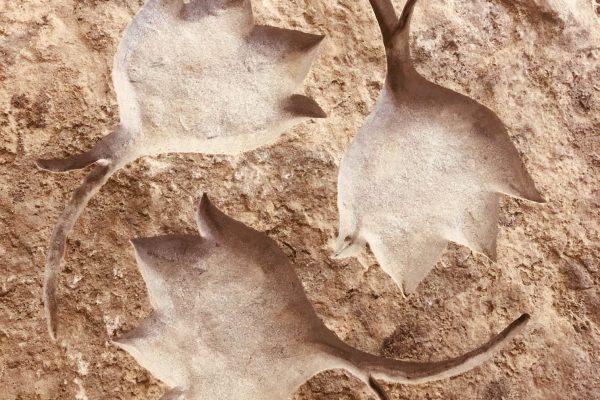 Hunt-Memorials-Monuments-Tombstones-Sculpture-7